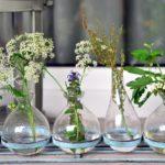 Vasen, Kräuter, Fensterbank,