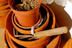 pots-771844_1920